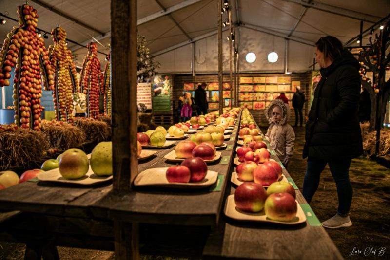 Österlen med Kiviks äppelmakrnad